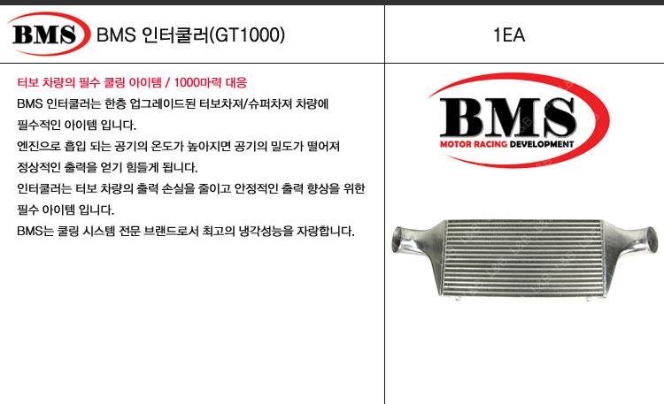 lnb_bms_intercooler_gt100.jpg