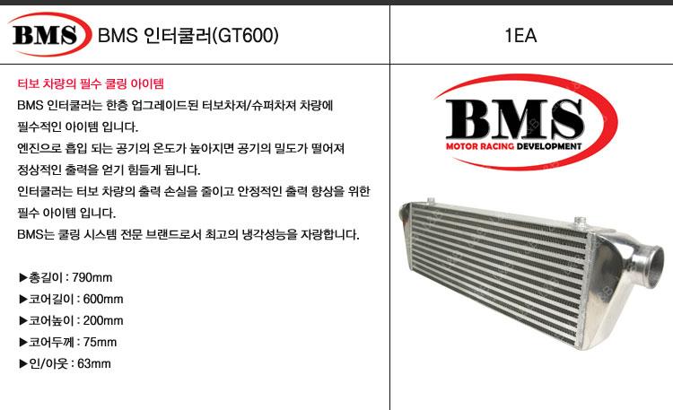 lnb_bms_intercooler_gt600.jpg